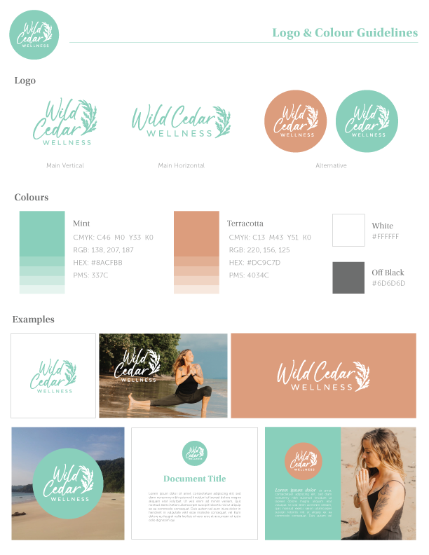 logo and colour guidelines